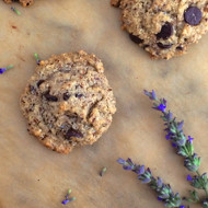 Grain Free Hazelnut Chocolate Chip Cookies